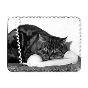 108892817_amazoncom-cat-call---ipad-cover-protective-sleeve---